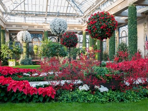 Christmas at Longwood Garden Bus Trip-SOLD OUT
